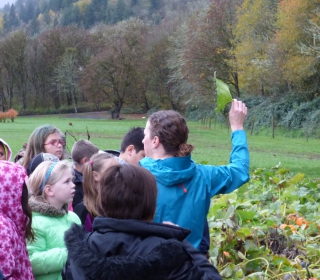 5th graders listen as Farm Stand Manager Rebecca describes growing pumpkins at Cascadian Farm October 29, 2015.jpg