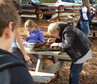 6th graders Robert and Anja search for composting critters at Cascadian Farm October 22, 2015.jpg